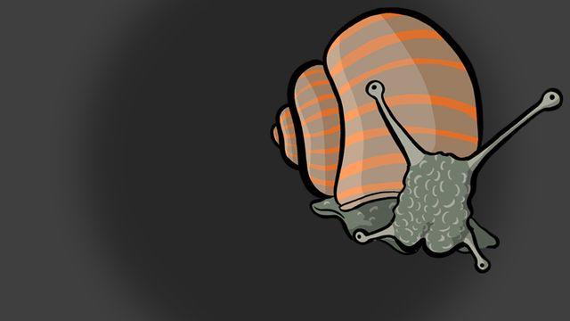 Question sur... Pourquoi les escargots naissent-ils avec une coquille ? [RTS]