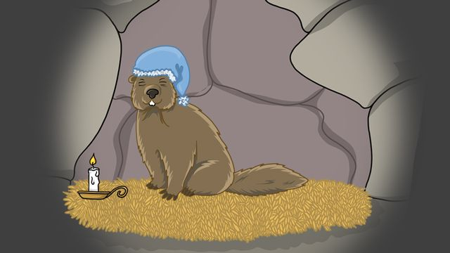 Question sur... Pourquoi les marmottes hibernent-elles? [RTS]
