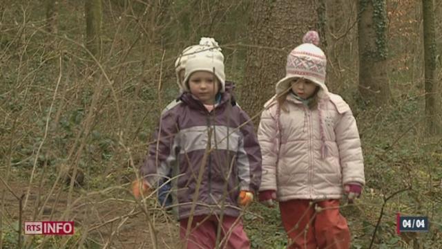VD: dans la région de Bex, des jeux en forêts sont organisés pour des enfants [RTS]