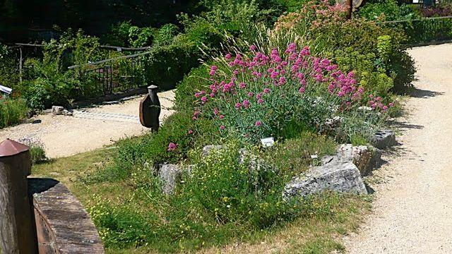 Le Jardin botanique. [ j-m falcombello - rsr - rsr]