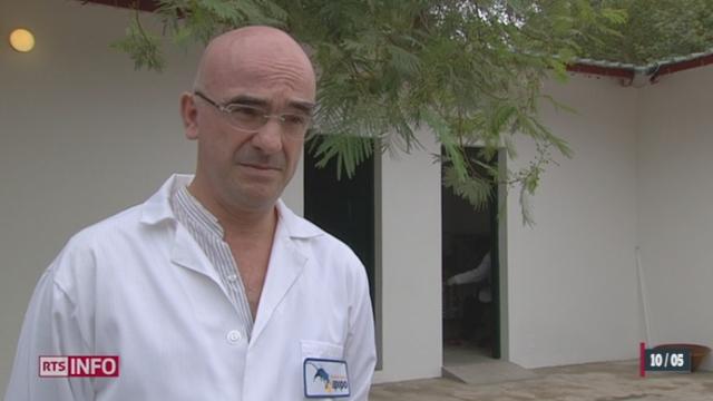 Une ONG belge, APOPO, effectue des expériences exceptionnelles au Mozambique pour tenter d'éradiquer la tuberculose [RTS]