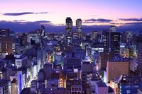 Japan by night. [SeanPavonePhoto - Fotolia]