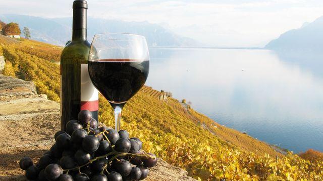 La contribution par litre de vin AOC déclassé en vin de table ne peut excéder 1 fr. 50. [HappyAlex  - Fotolia]