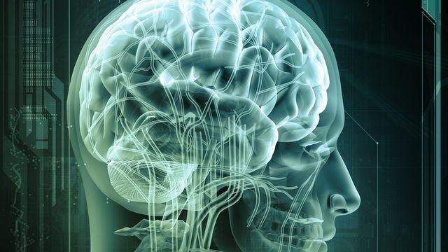 L'EPFL veut construire un ordinateur capable de simuler le fonctionnement du cerveau humain. [adimas]