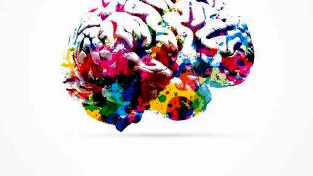 Un cerveau [Fotolia]