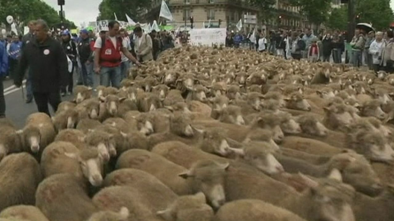 Les agriculteurs français manifestent à Paris [RTS]
