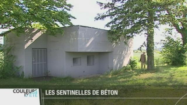 """GE: deux bunkers datant de la Seconde Guerre mondiale peuvent être vus sur le """"sentier des toblerones"""" [RTS]"""