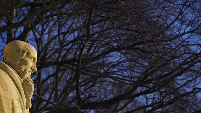 """Jean Calvin dépeint la nature comme """"le beau théâtre de la Création"""". [Fabrice Coffrini - AFP]"""