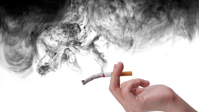 Tabac, cigarette, nicotine, fumée [© 831days - Fotolia]