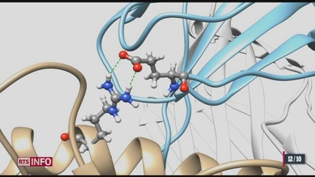 VD: le discret Institut suisse de Bio-informatique est mis en lumière par le récent prix Nobel de chimie [RTS]
