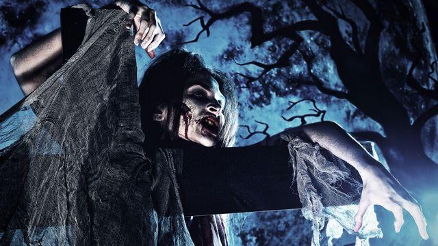 """Le phénomène """"zombie"""" envahit la littérature et le cinéma. [Andrey Kiselev - Fotolia]"""