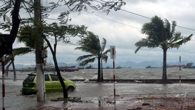 Les vents ont nettement faibli en touchant les côtes du Vietnam. [Vietnam News Agency - AFP]