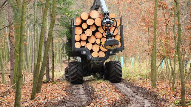 Les engins mécaniques lourds endommagent fortement le sol de nos forêts. [Kletr - Fotolia]