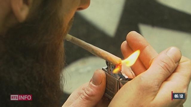 Des députés genevois proposent la création d'associations de consommateurs de cannabis [RTS]