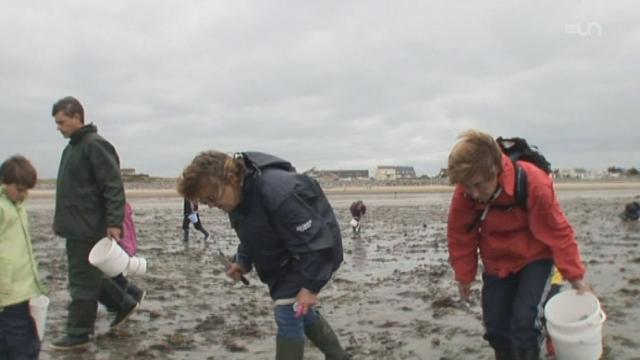 H2O LA LA - France : La pêche à pied [RTS]
