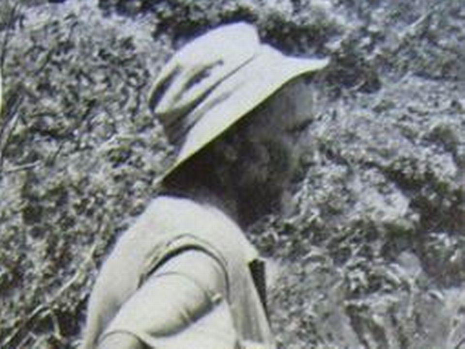 """Père de Raymond Maufrais, explorateur disparu dans les forêts de Guyane [Livre """"A la recherche de mon fils"""" Julliard 1956]"""
