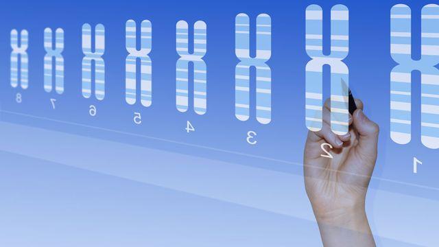 L'offre de tests génétiques sur internet est très importante. [Kagenmi - Fotolia]