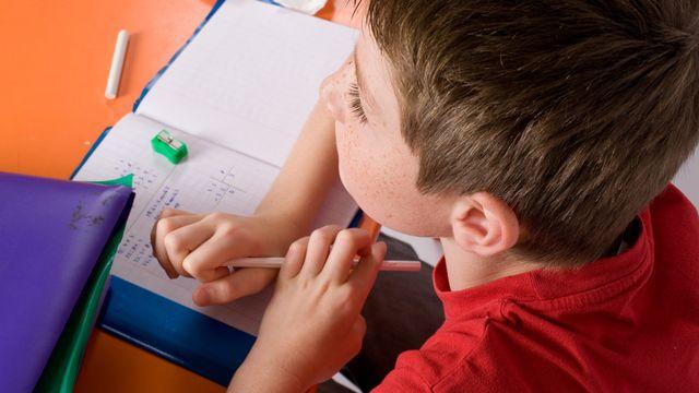 Intégrer les élèves en difficulté dans les classes ordinaires, une idée nouvelle qui fait son chemin en Suisse romande. [Chlorophylle - Fotolia]