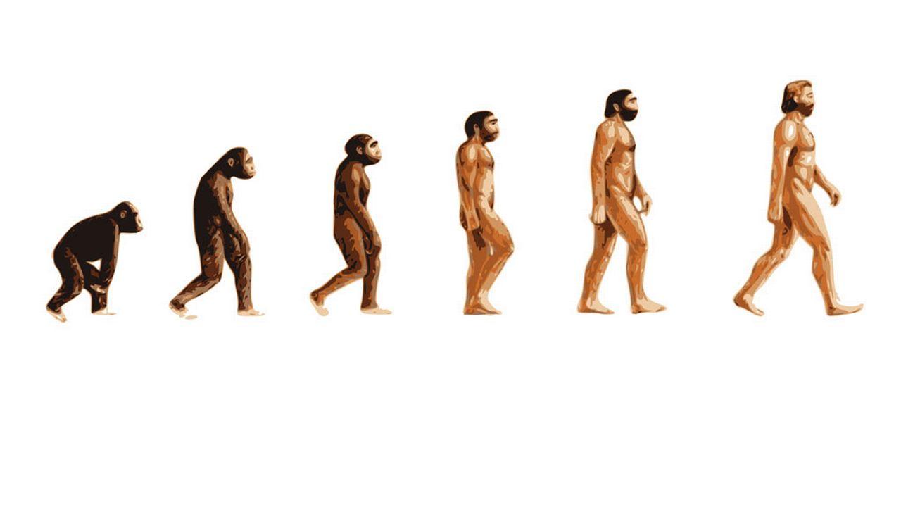 L'évolution en action. Floki Fotos Fotolia [Floki Fotos - Fotolia]