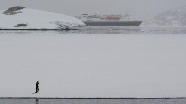 """Un tourisme """"contrôlé"""" se développe en Antarctique. [Sylvie Cohen]"""