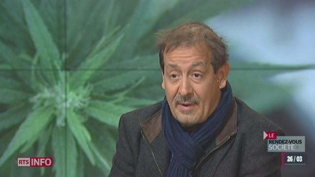 Le rendez-vous société: la politique en matière de cannabis est en mutation [RTS]