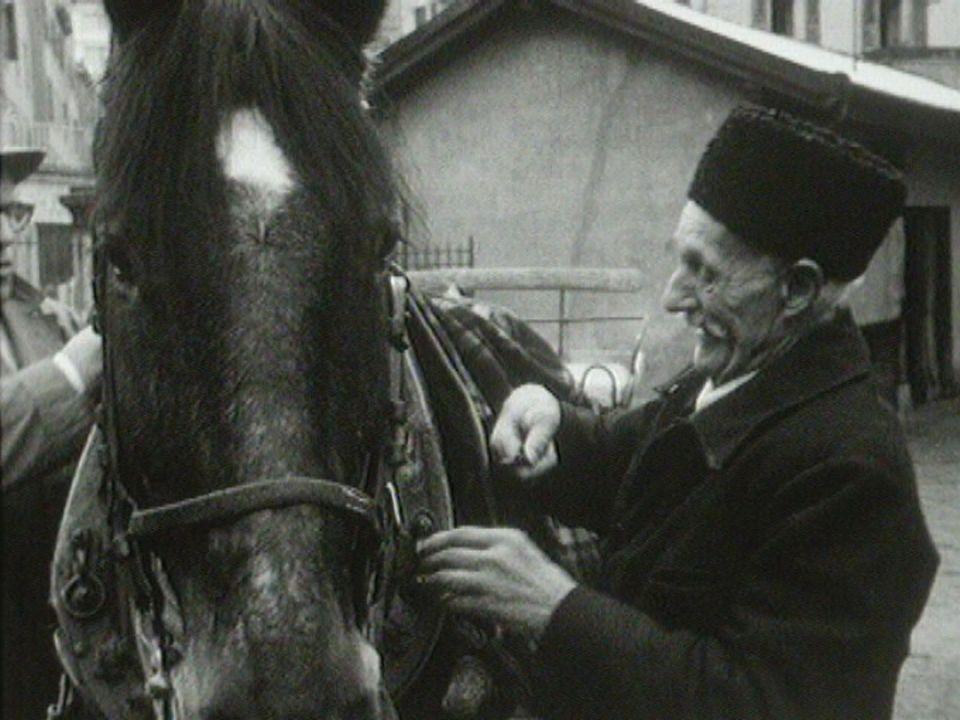Le dernier cheval au marché de La Palud à Lausanne en 1971. [RTS]