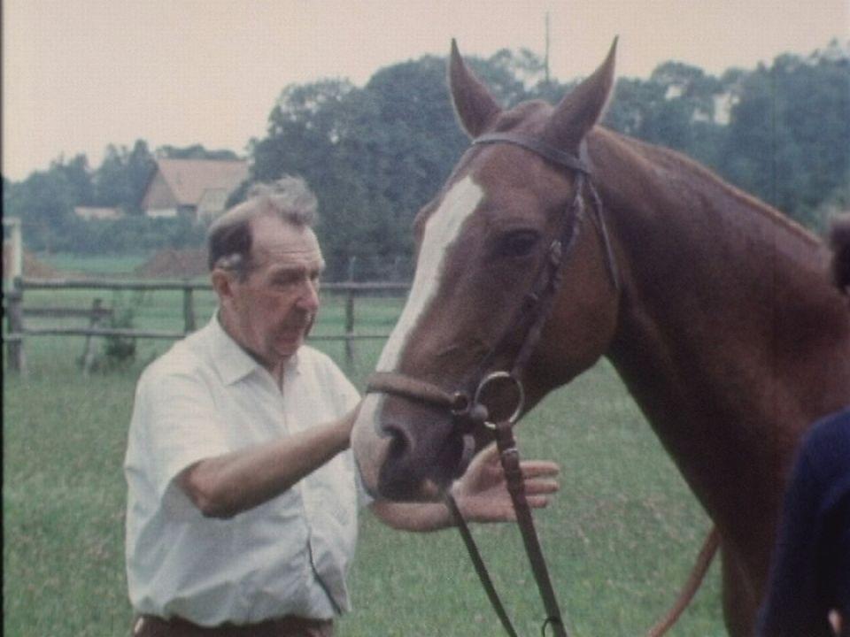 Un vétérinaire passionné de chevaux. [RTS]
