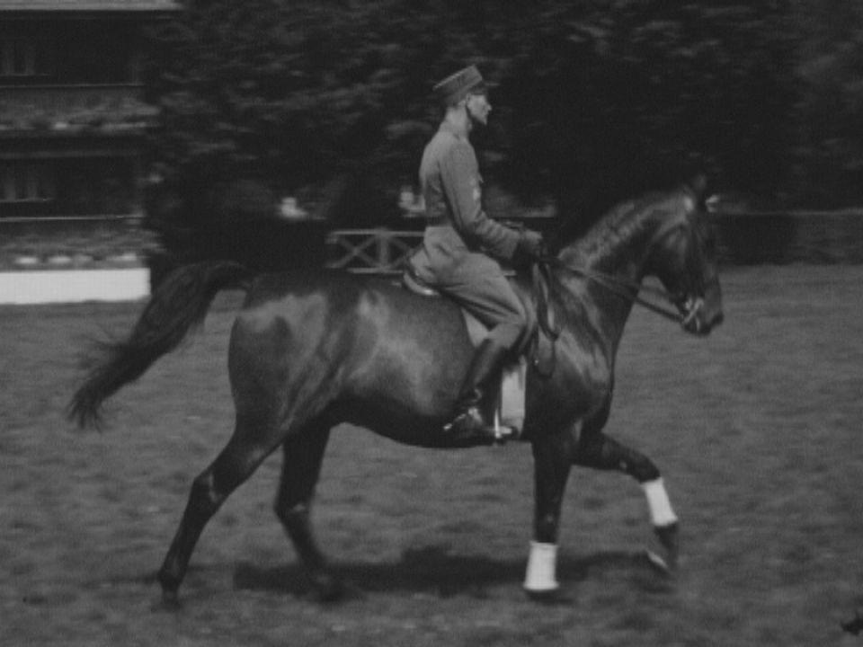 Le dressage du cheval, un art. [RTS]