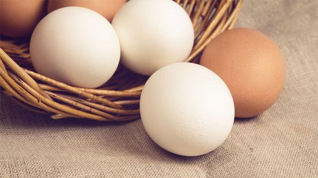 """Le dicton le dit: """"il ne faut pas mettre tous ses œufs dans le même panier"""". Goodween123 Fotolia [Goodween123 - Fotolia]"""