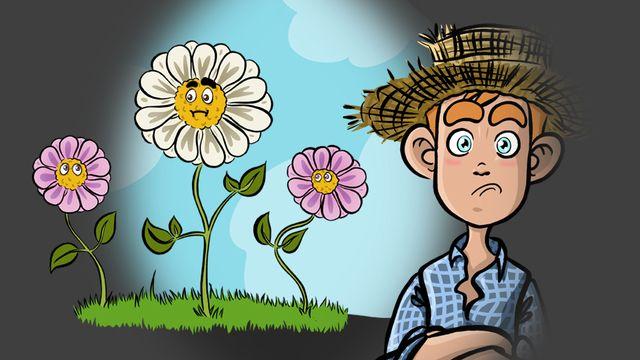 Les plantes communiquent-elles? [RTS]