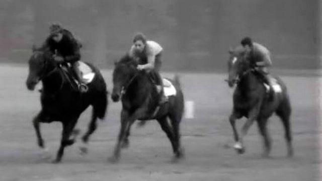 Visite à Chantilly, haut lieu des courses de chevaux en France. [RTS]