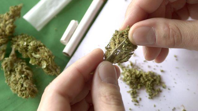 Les trafiquants revendaient du cannabis, de l'ecstasy et des amphétamines. Près de 80 personnes sont impliquées. [Andree-Noëlle Pot - Keystone]