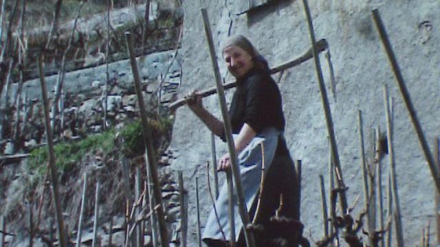 Le village valaisan de Branson s'anime avec le travail de la vigne. [RTS]