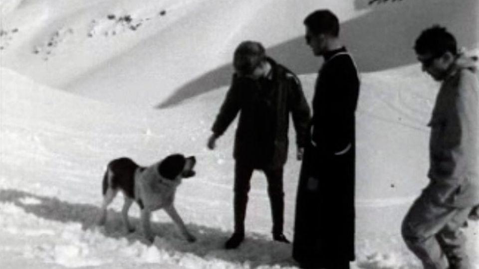 Visite au Grand Saint-Bernard où sont élevés les célèbres chiens. [RTS]