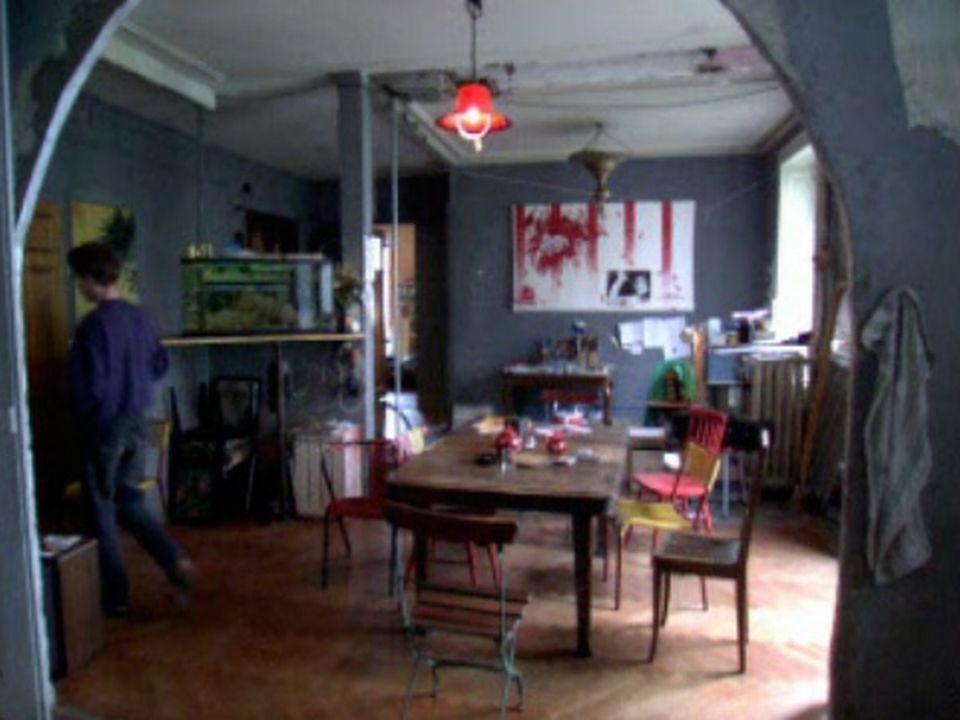 Un mode de vie alternatif: l'univers du squat à Genève. [RTS]