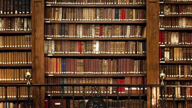 """Les bibliothèques sont à l'honneur dans les """"Métissages 13.0"""". [Manuart  - Fotolia]"""