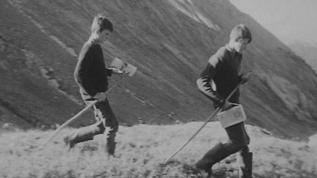 Jeunes à l'alpage [RTS]