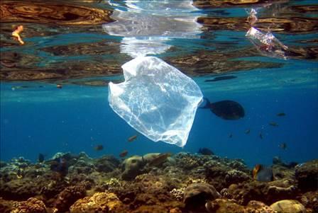 Un plongeur se filme au beau milieu d'un océan de déchets — Bali