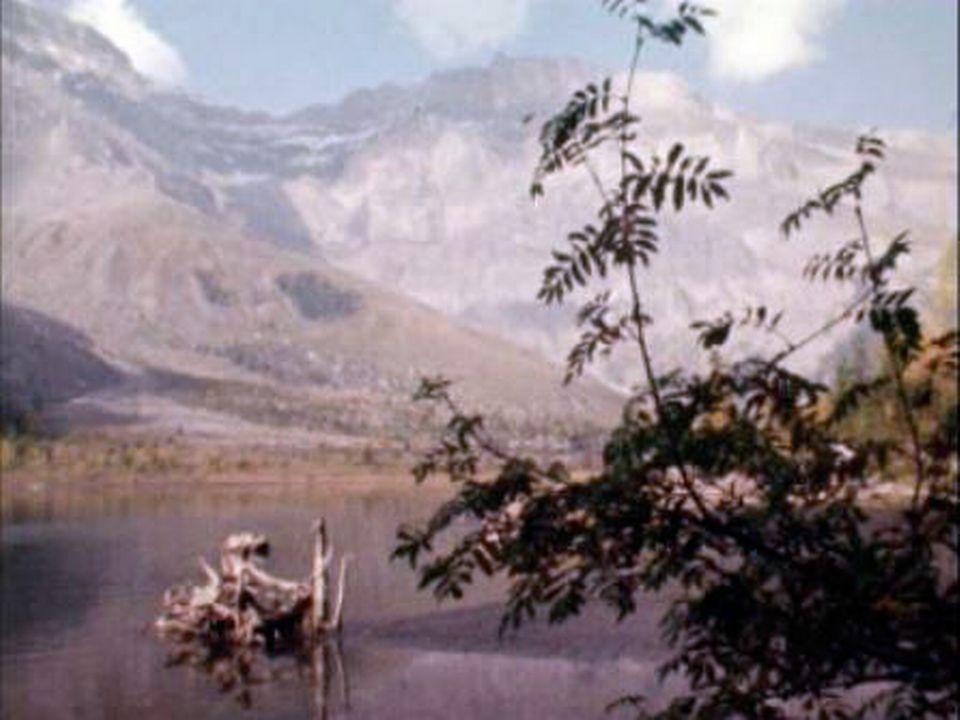 Une réserve naturelle de première importance pour la Suisse. [RTS]