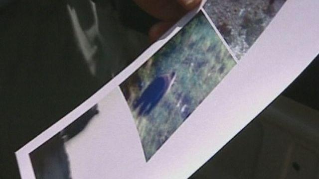 Première apparition d'un ours dans le Parc National en 2005. [TSR]