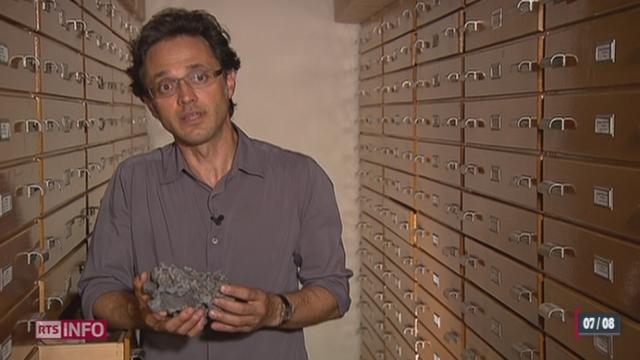 Au Venezuela, les restes d'un petit dinosaure ont été découverts [RTS]