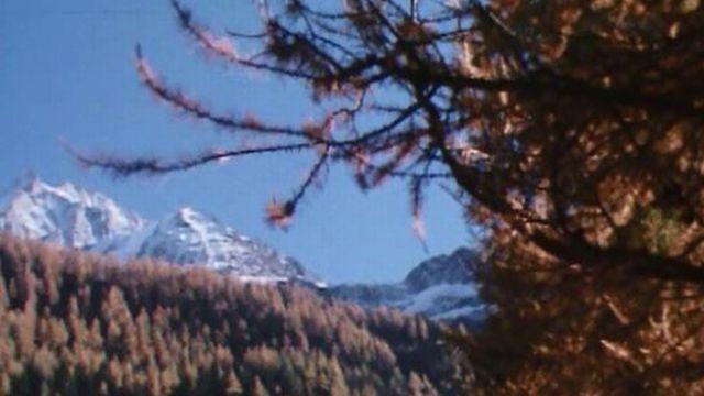 Les paysages exceptionnels de la vallée du Lötschental en Valais. [RTS]