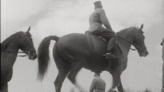 Les chevaux militaires terminent leur dressage. [RTS]