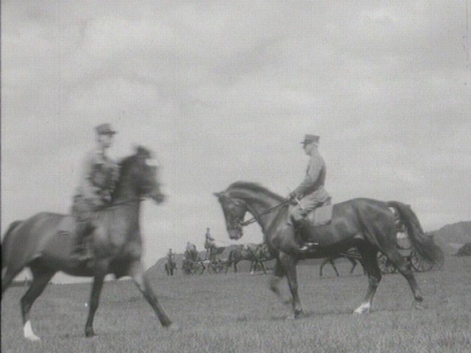 La discipline à l'armée, également pour les chevaux! [RTS]