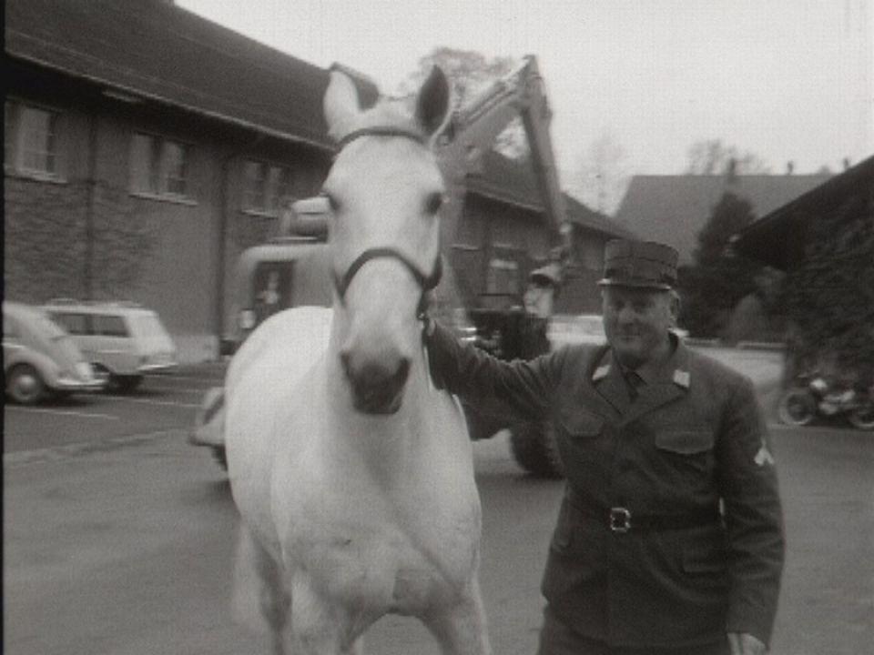 Soldats et chevaux font bon ménage en 1969. [RTS]
