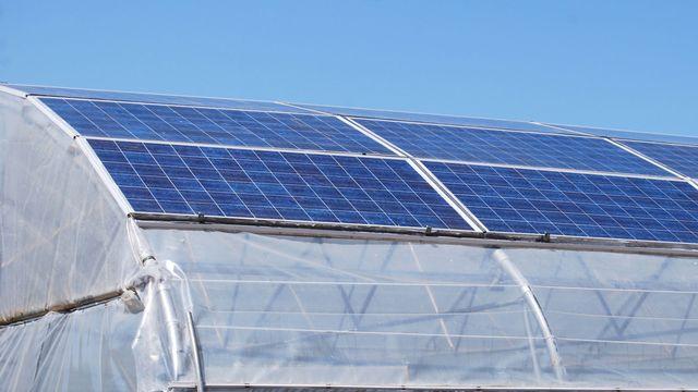 Une serre peut produire de l'énergie en plus de végétaux. Bernard Girardin Fotolia [Bernard Girardin - Fotolia]