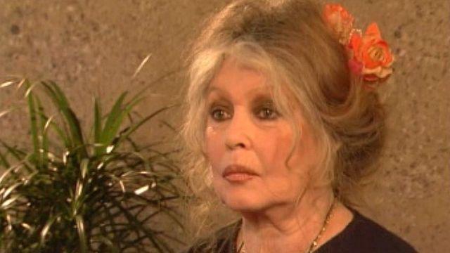 Brigitte Bardot revient sur les moments forts de sa carrière.