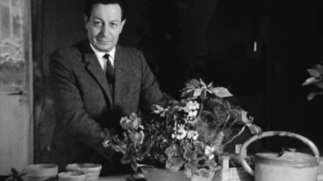 Comment sauver les fleurs reçues à Noël? Conseils simples. [RTS]