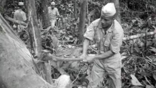 En 1969 au Pérou, la déforestation est un pas vers le progrès. [RTS]