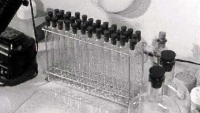 Le professeur Pierre Lépine et son équipe travaille sur un vaccin.